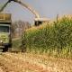 صنعت کشاورزی ایران
