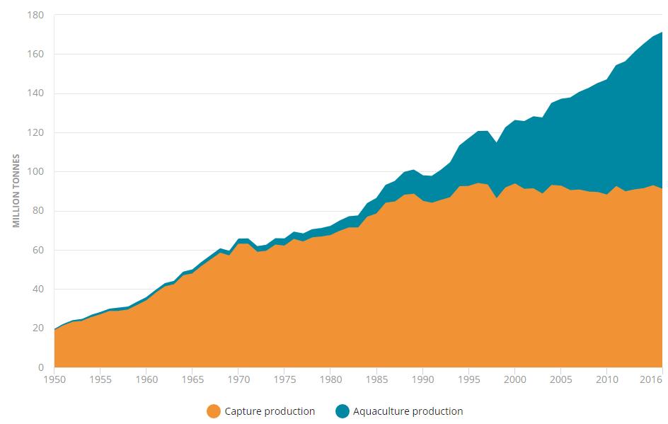 نمودار تولیدات آزیان