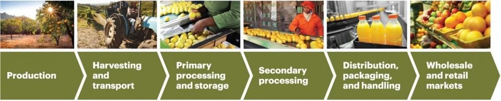 اهمیت زنجیره تامین در محصولات کشاورزی