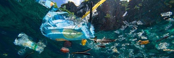 بازیافت پلاستیک ها