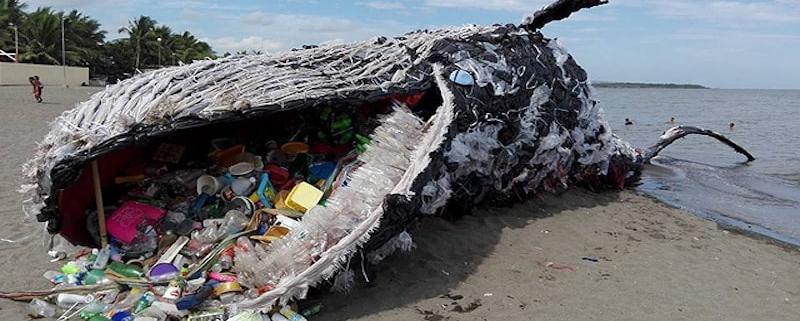 مدیریت توزیع و جمع آوری پسماند های پلاستیکی
